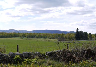 Royal Deeside Holiday Cottages North East Scotland Monandaven Family Holiday Cottage Mobile Image 7